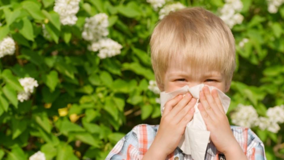 Как да преборим настинките без лекарства?