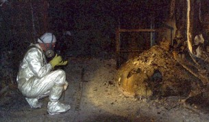Кракът на слона – едно от лицата на аварията в Чернобил