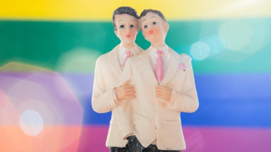 Какво е гей двойка, отговарят децата (видео)