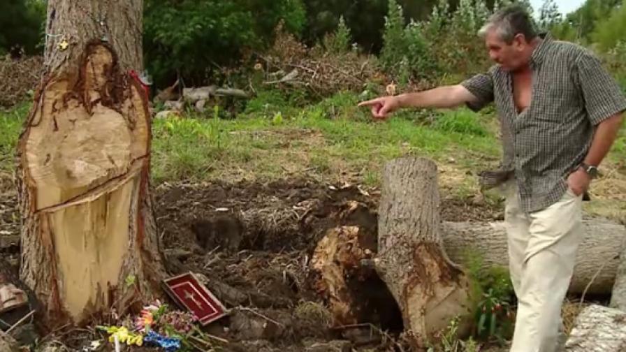 Ликът на Христос се появи на дърво в Аржентина