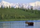 Продажбата на Аляска - най-глупавата сделка на Русия