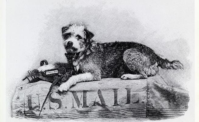 Оуни - кучето пощальон