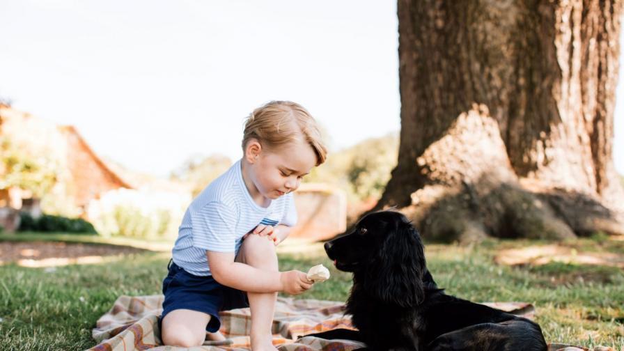 Специален ден очаква принц Джордж и сестричката му