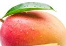 Два плода манго бяха продадени за рекордната сума