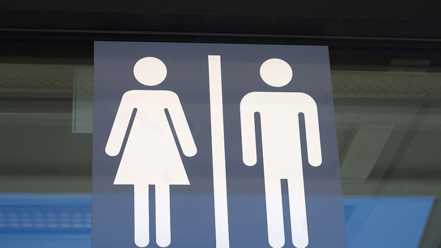 Учени: Ето защо дамите се бавят повече в публичните тоалетни