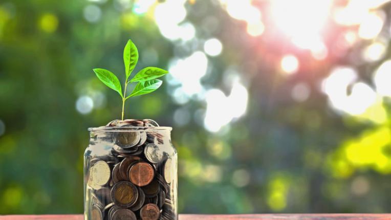 7 начина да спестиш пари като опростиш живота си