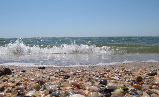 Черно море изхвърли над 100 кг кокаин