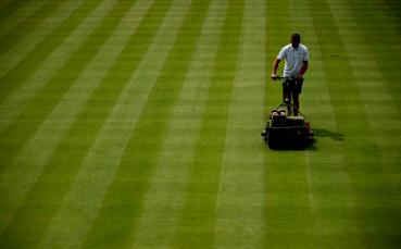 Берлин приема силен турнир на трева от 2020?