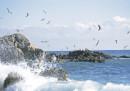 Морето взима жертви, за какво да внимаваме