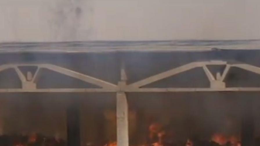 Пожарът в най-голямата кравеферма у нас