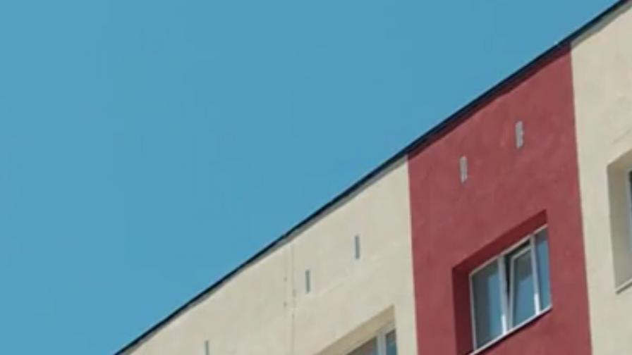 Зазидаха живи гълъби при саниране на блокове
