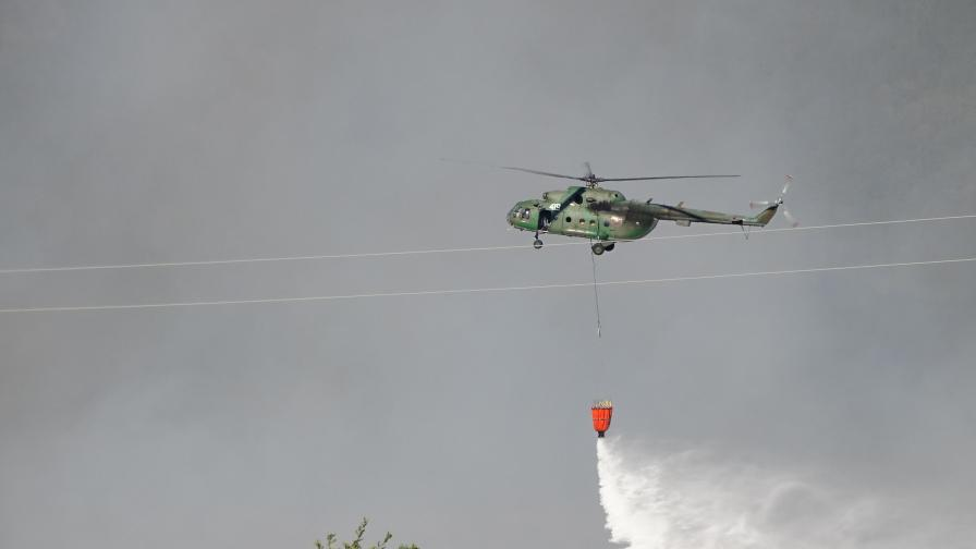Екокатастрофа след пожара в Пирин, опасността остава