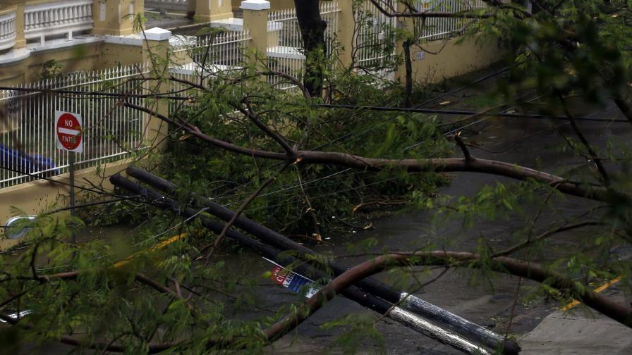 Падналите дървете станаха обичайна гледка на Карибите този септември