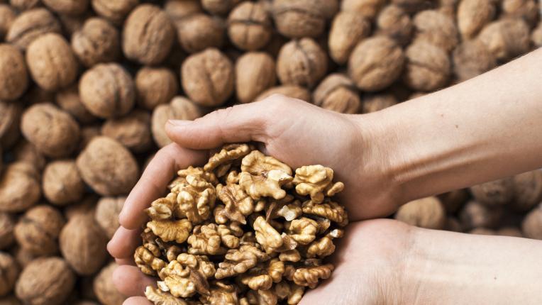 Орехите: чудните ядки на природата