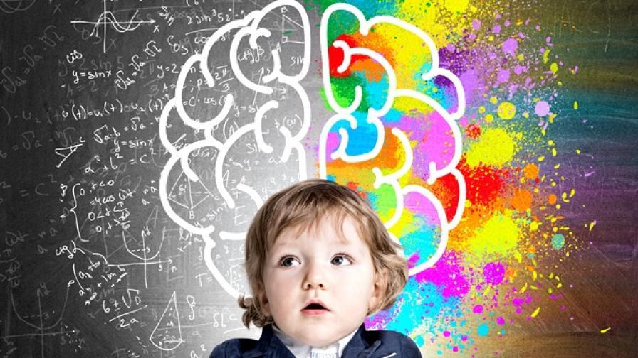 Можете ли да решите най-краткия IQ тест?