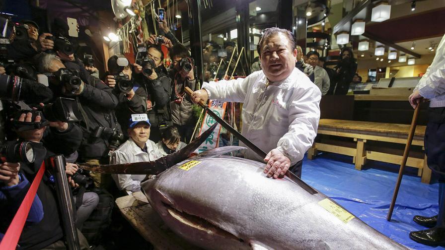 В Япония продадоха риба за хиляди долара