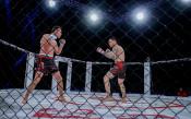 Боят между Златков и Михайлов<strong> източник: LAP.bg</strong>