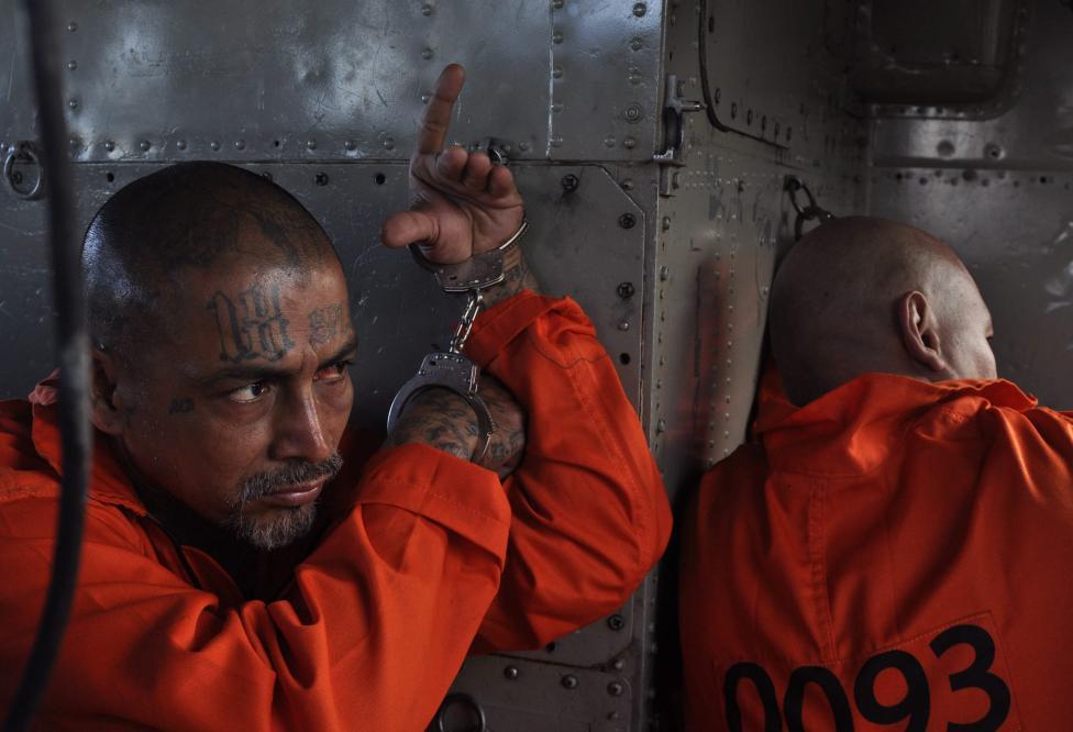 - Мара Салватруча – Тайфата на пичовете от Салвадор, е най-страшната гангстерска организация, създавана някога.