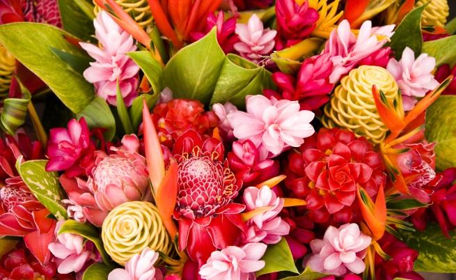Дръжте живи цветя в дома си. Не само, че придават по-завършен и красив вид на дома, но носят щастие. Проучване, проведено от университета Рутгерс в САЩ, твърди, че истинските цветя имат терапевтично действие върху хората и ги правят по-щастливи и спокойни.