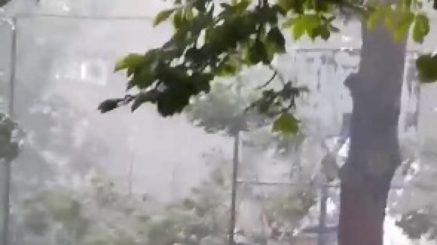 <p>След градушките:Хиляди унищоженидекари, щети за милиони</p>