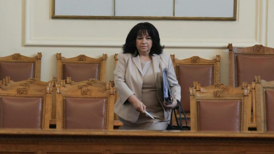 """Теменужка Петкова: АЕЦ """"Белене"""" може да е готова до 7-8 години"""