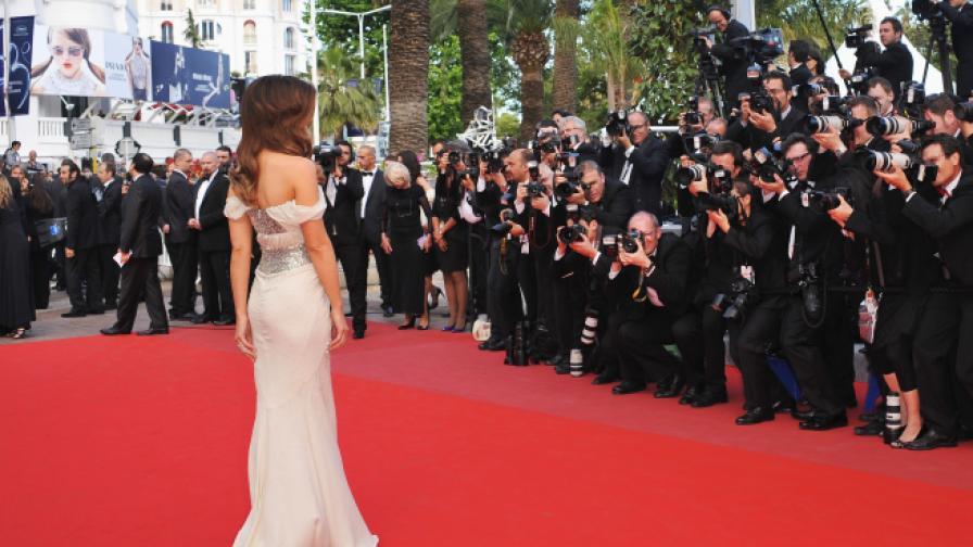 Най-големите звезди сред жените в киното днес