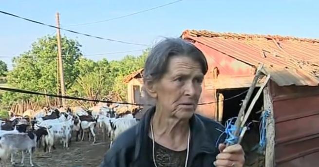 Баба Дора, чиито животнибяхаединственитепощадено в село Шарково, каза пред NOVA,