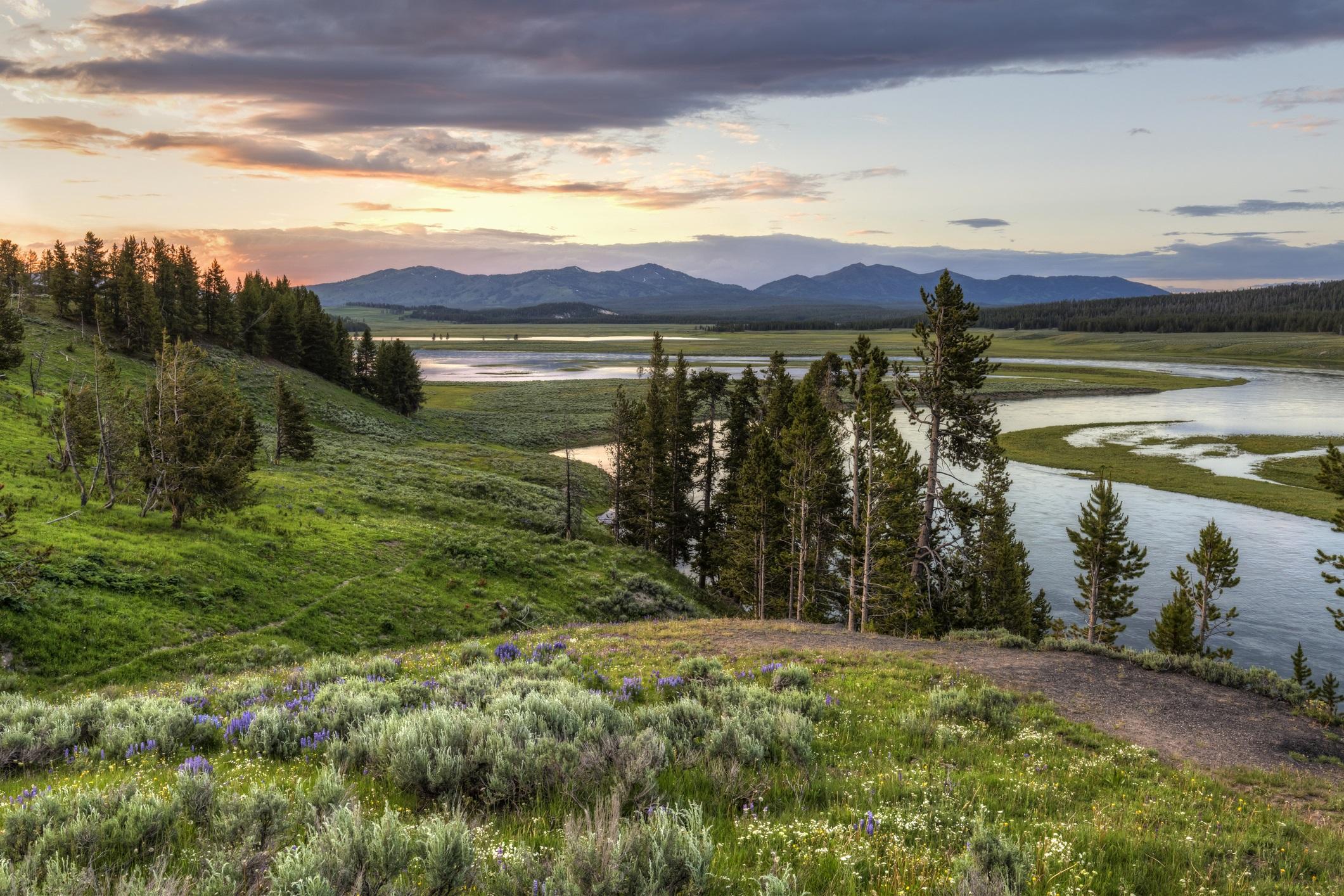 Отдавна учените се опасяват, че супервулканът под националния парк ще изригне. Оказва се обаче, че опасността от мощно земетресение е много по-вероятна