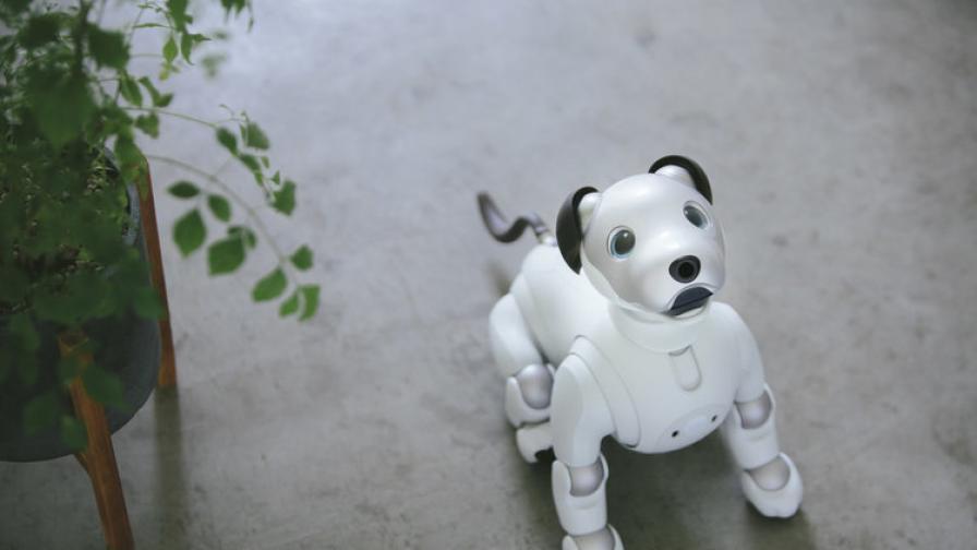 Кучето-робот на Sony се завръща с нов интелект