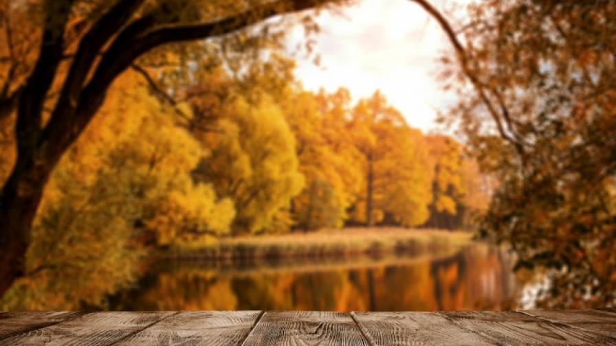 Храни, с които да подготвим тялото си за есента (СНИМКИ)
