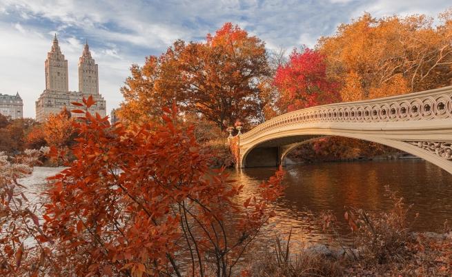 Странните начини, по които есента променя тялото ни