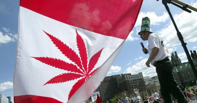 Пушенето на марихуана за забавление вече легално в Канада. Новите