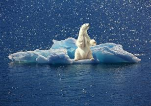 Нашият ангажимент към климата