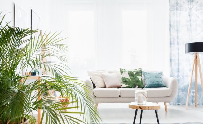 Декорации в дома, с които да привлечете щастие