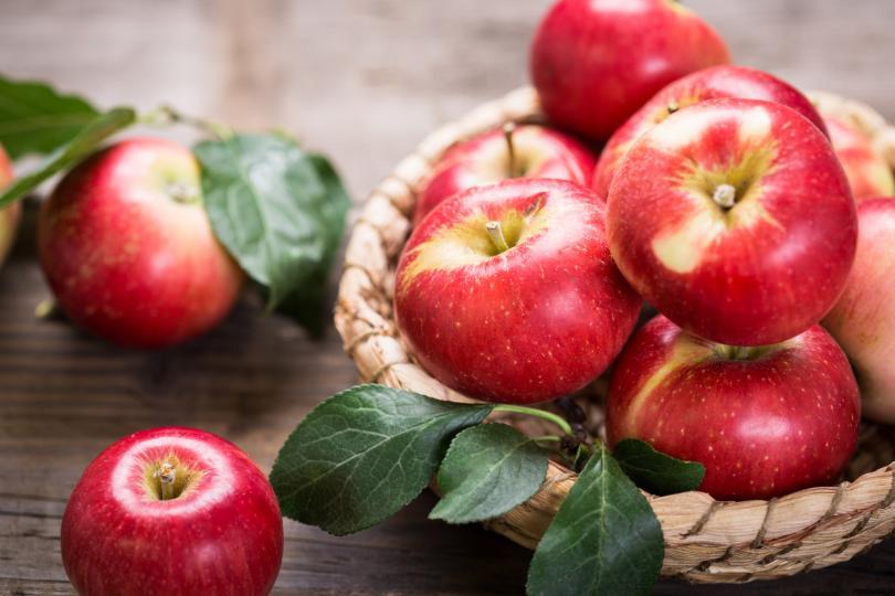 <p><strong>Ябълки</strong><br /> Те са много богати на пектин &ndash; разтворими хранителни влакна, които помагат на организма постепенно да усвоява енергията и извеждат от него вредните шлаки. За да се справите с глада и да възстановите силите си в средата на деня, вземете си на работа ябълка с парче сирене.</p>