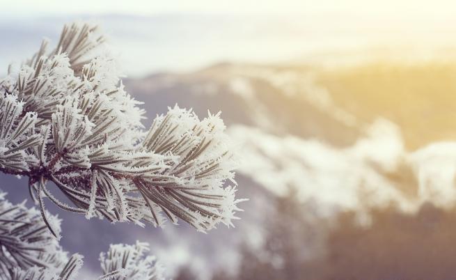 Отново без сняг за Коледа, студена ли ще е зимата