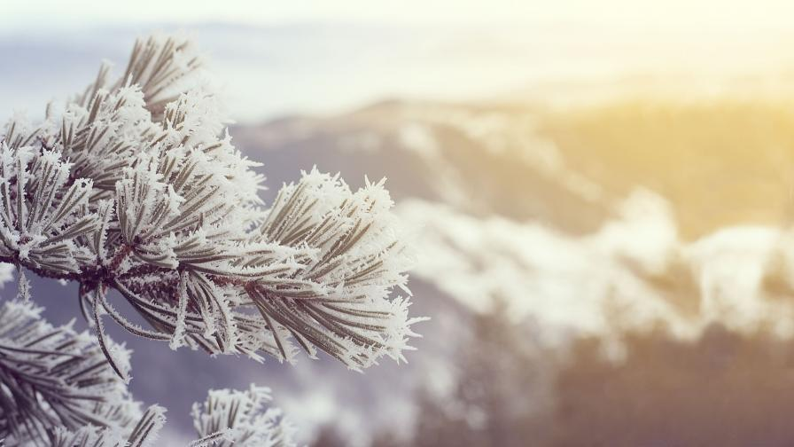 Жълт код за сняг в 11 области, сложна ситуация по пътищата
