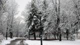 След падналия сняг: Десетки селища без ток