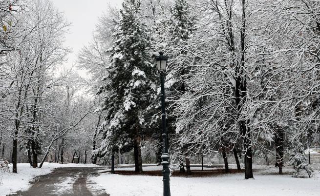 Градусите падат, снегът ще натрупа, кога спира да вали