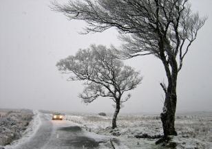 Зимната буря в САЩ остави хиляди без ток