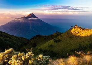 Отново силни земетресения в Индонезия