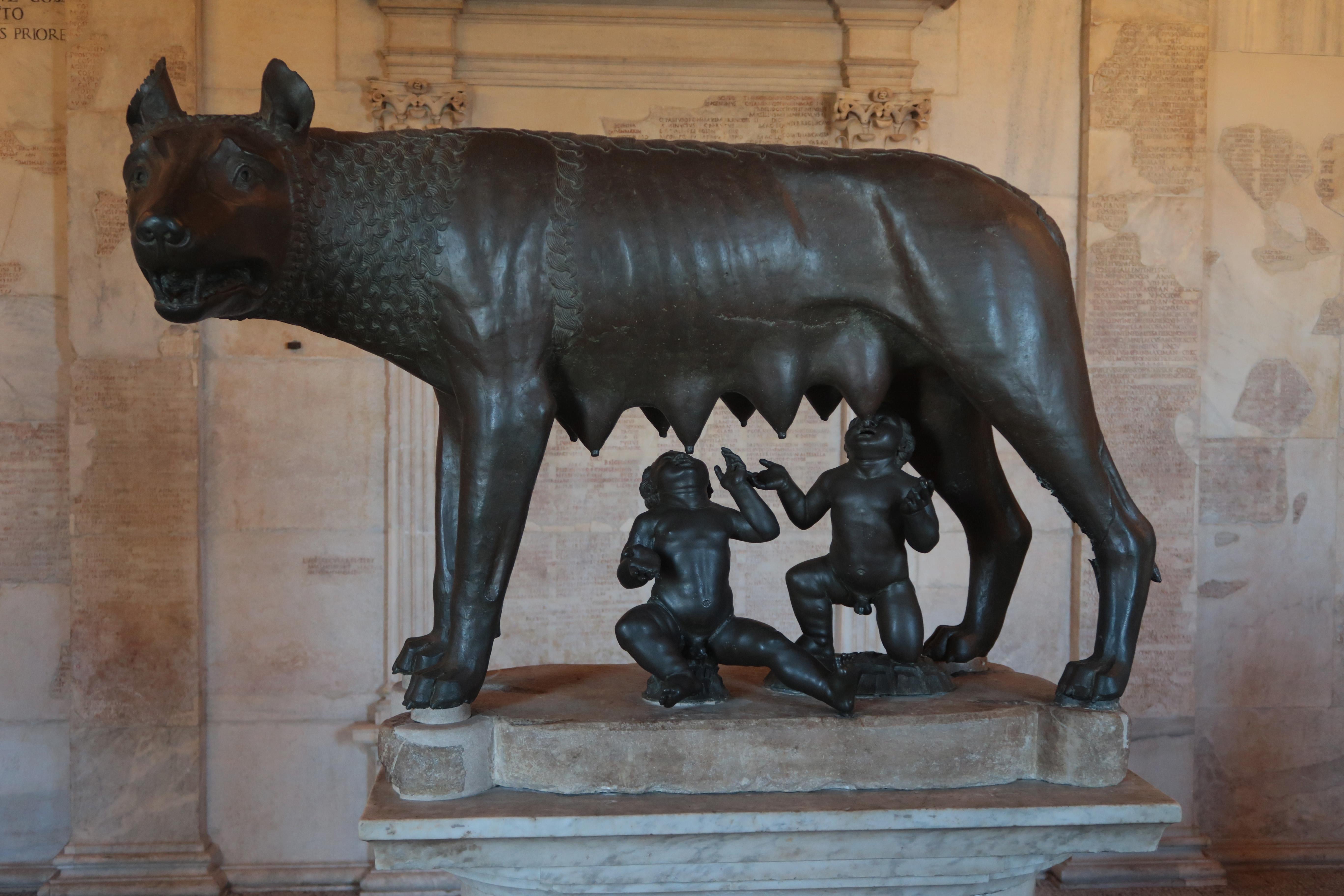 Римските вълци<br /> В Италия напоследък проблемът с вълците става все по-сериозен. Ромул и Рем - митичните основатели на Рим, споменати в римската митология като близнаците, синове на весталката Рея Силвия и на бога на войната Марс, внасят нотка мистичност в проблема що се отнася до италианската столица. През 2017 г. скрита камера улавя два млади вълка в предградията на града – първите от този животински вид забелязани в областта от повече от век насам.