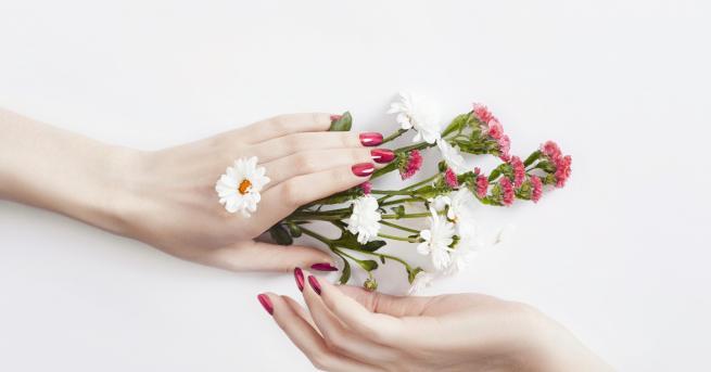 Снимка: За меки и нежни ръце през зимата спазвайте тези 3 неща