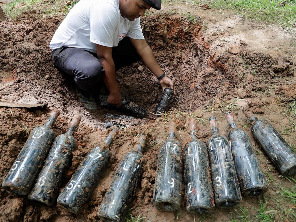 Бразилският винопроизводител Olivardo Saqui погребва 600 бутилки вино всяка трета събота на всеки месец като знак на почит към португалската традиция от началото на деветнадесети век.