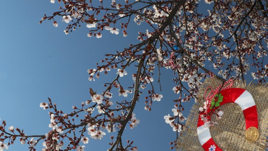 Пролетта е отново тук...