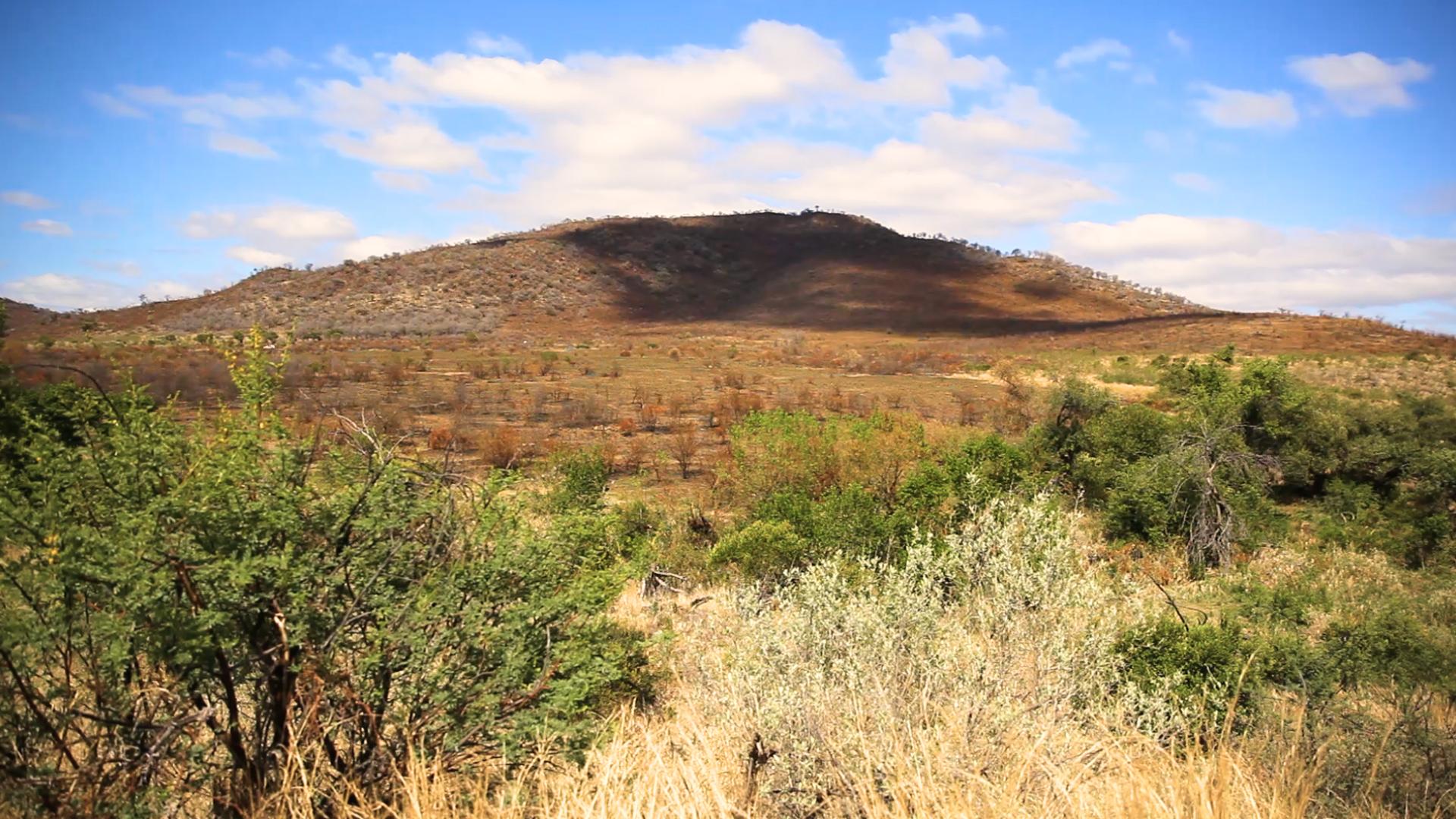 Националният парк Пиланесбърг в Южна Африка е разположен върху 550 кв. км. паркова площ, част от вулканичен кратер на 1300 милиона години, един от най-големите от този тип в света. Пиланесбърг е едно от малкото свободни от малария диви места, обитавани от големите пет. Тук се разхождат на свобода над 7000 диви животни.