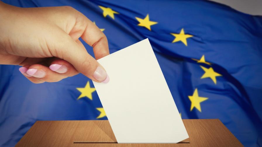 Европейските избори - поглед назад и какво е бъдещето