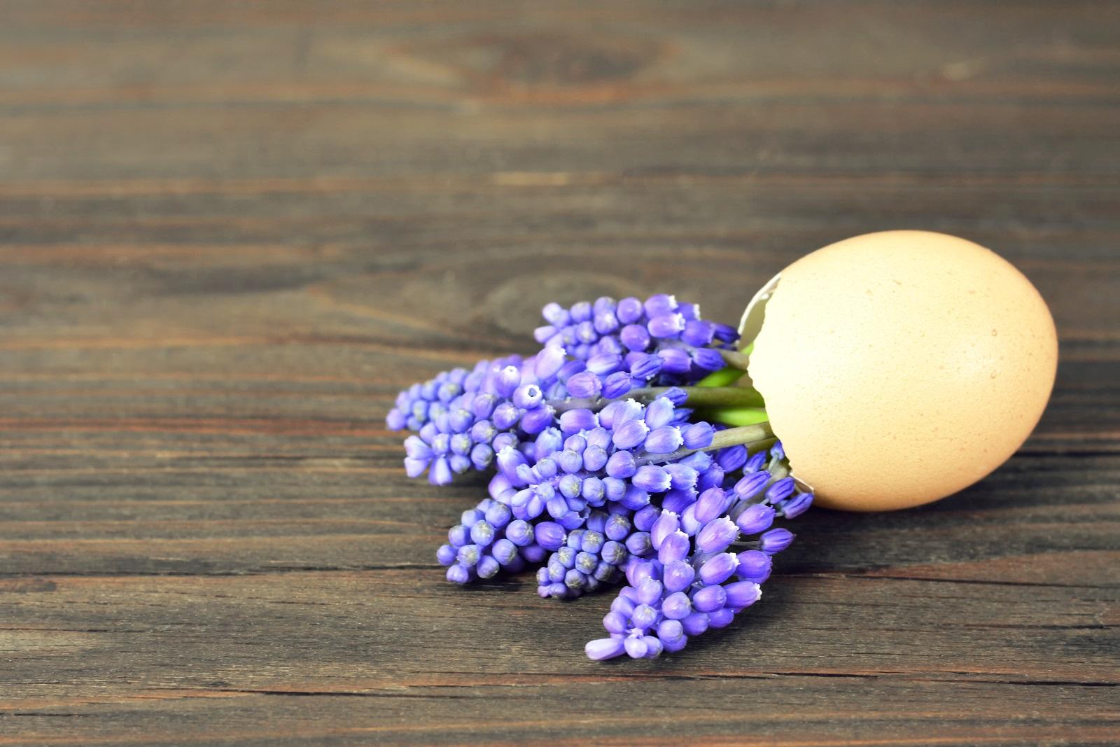 Може да е изкуствено или истинско - важно е само да се съобразите с размера на черупката, за да изглежда като мини букет с цветя в нестандартна вазичка.