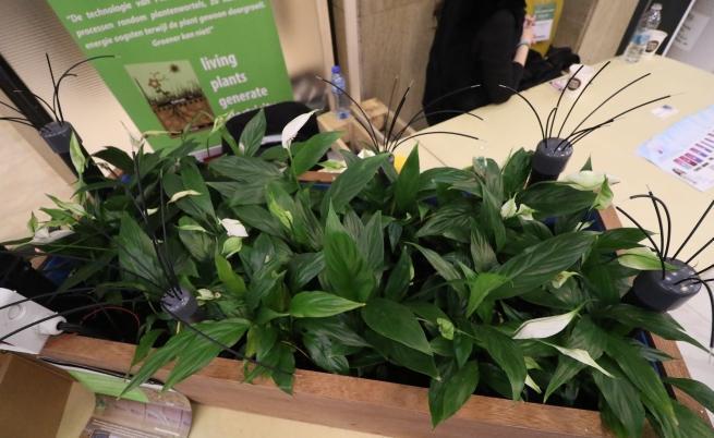 """Изобретението """"Plante"""", което може да промени околната среда."""