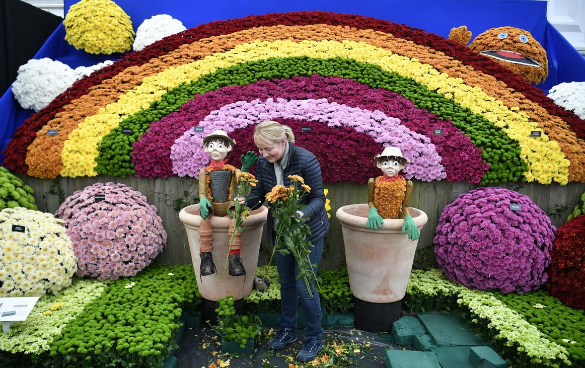 Изложението за цветя в Челси, Лондон е най-популярното във Великобритания. То се провежда в рамките на пет дни през май всяка година от 1912 насам.